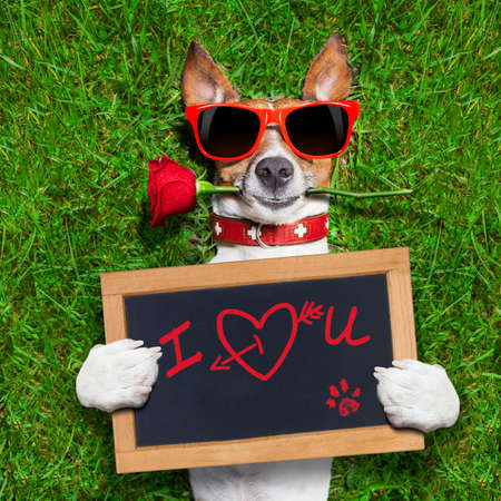 dog with a red rose in his mouth and a blackboard with the words in red: I love you