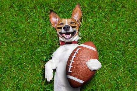 Fußball-Hund hält ein Rugby-Ball und laut lachen Standard-Bild