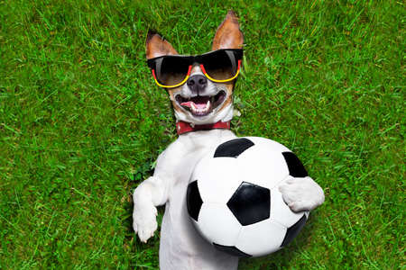 football trophy: german soccer dog holding a ball and laughing out loud