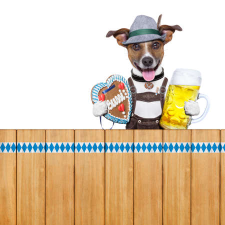 bavarian dog above a wooden fence holding beer mug and gingerbread heart photo