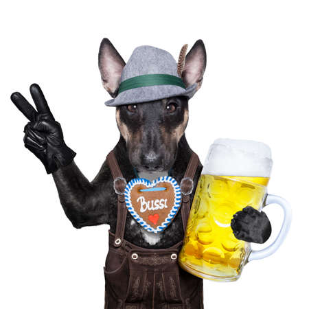 wiesn: bavarian german dog with peace or victory fingers and  beer mug