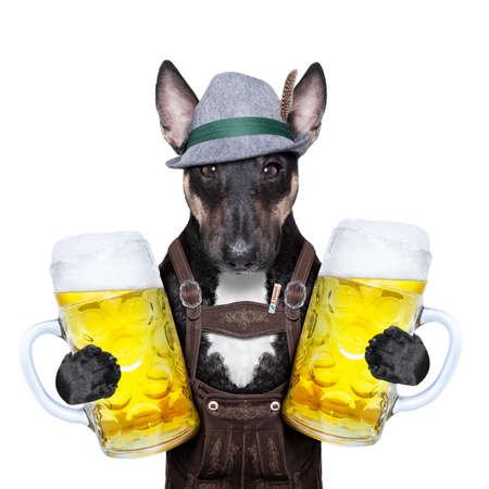 beerfest: bavarian oktoberfest dog  with two heavy beer  mugs