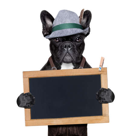 bavarian german dog holding a blank blackboard photo