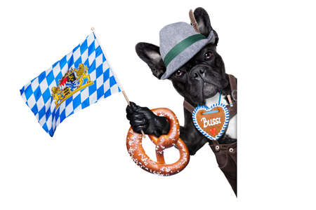 bavarian german dog besides  a white blank banner or placard waving with bavarian flag photo