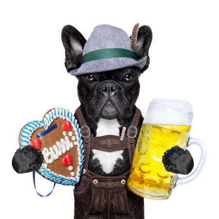 bavarian oktoberfest dog  with beer mug and gingerbread heart Zdjęcie Seryjne