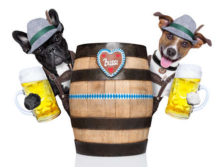 beerfest: bavarian  dog couple behind a beer barrel toasting with beer mugs
