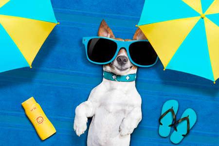 perros graciosos: perro acostado en una toalla bajo la sombra del paraguas relajante y relajarse en las vacaciones de verano Foto de archivo