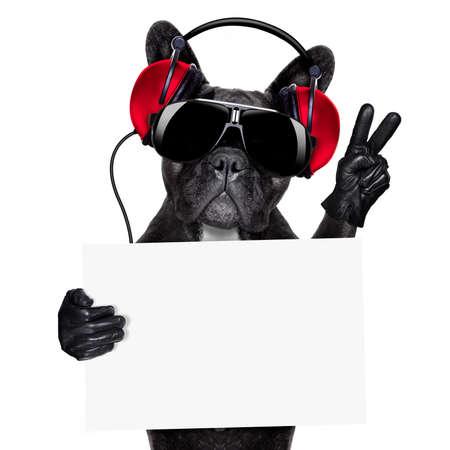 grappige honden: koele dj hond luisteren naar muziek met een witte en lege banner of plakkaat met vrede of overwinning vingers