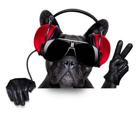 clubbing: cool dj dog listening to music behind a white and blank banner or placard with peace  or victory fingers