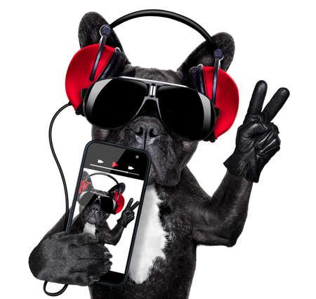 Kühles DJ Hund Musikhören mit Kopfhörern und Musik-Player mit Frieden oder Sieg Finger