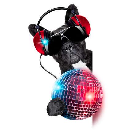 dj hond luisteren naar muziek achter een lege en lege banner met een mooie disco bal en verlichting