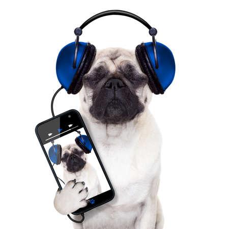 pug hond luisteren naar muziek van smartphone of speler, ogen dicht Stockfoto