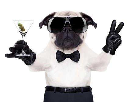 lifestyle: leuke pug hond met martini glas en vrede of overwinning vingers, Stockfoto