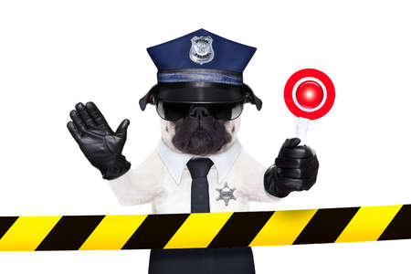 POLICE DOG ON DUTY WITH stop sign and hand behind a warning stripe band or tape isolated on white blank background photo