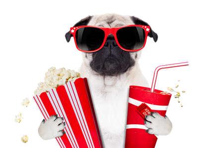 cibi: cinema film tv guardando pug cane isolato su sfondo bianco con popcorn e soda indossando occhiali 3d