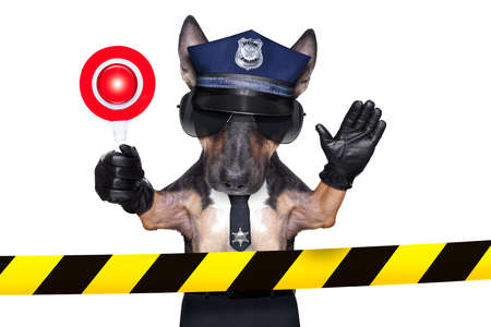 POLICE DOG ON DUTY WITH coffee to go and a donut or Doughnut, isolated on white blank background on a site under construction photo