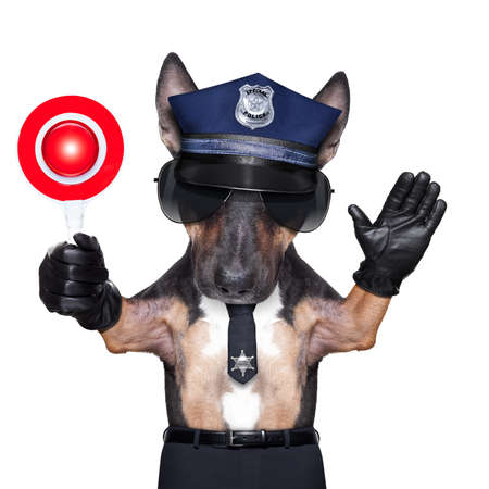 POLICE DOG ON DUTY WITH stop sign and hand , isolated on white blank background photo