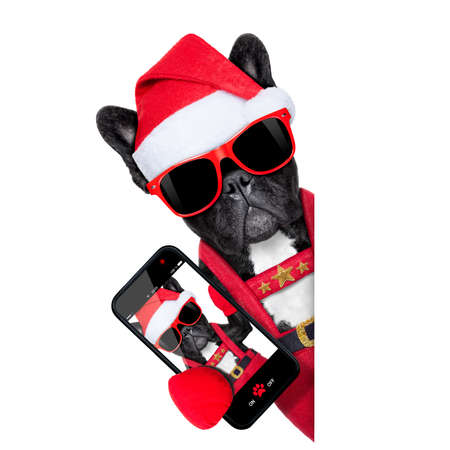 santa claus christmas dog wearing a hat taking a selfie,  isolated on white background photo