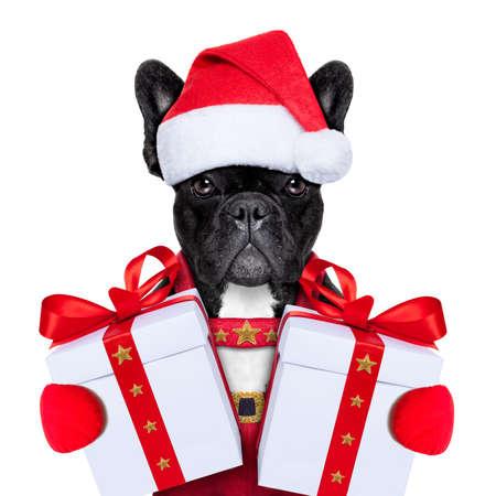hut: Weihnachtsmann Weihnachten Hund trägt einen Hut mit einem Weihnachtsgeschenk oder Geschenk für Sie