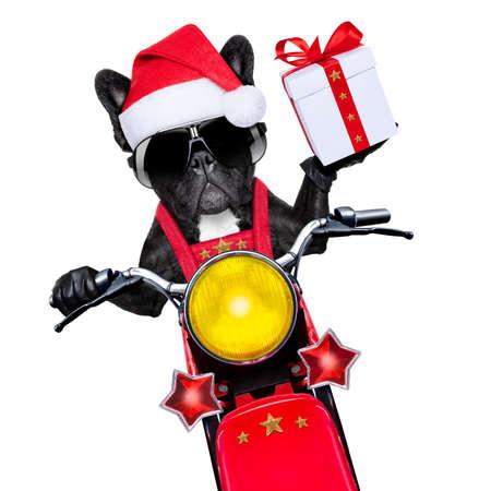 santa claus dog on motorbike bringing presents or gifts to everyone photo