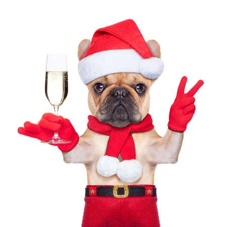 santa claus Hund Toasten Jubel mit Champagner-Glas und den Sieg oder Frieden Finger, isoliert auf weißem Hintergrund