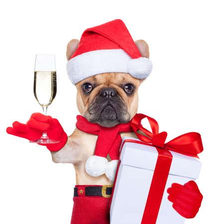 santa claus kerst hond roosteren cheers met champagne glas, geïsoleerd op een witte achtergrond Stockfoto