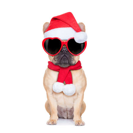 Santa claus christmas fawn  bulldog dog wearing read heart shaped glasses , isolated on white background photo