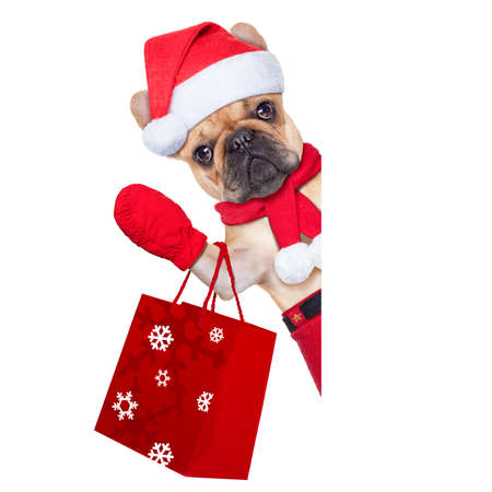 santa claus christmas dog  isolated on white background, waving hands, and shopping on sale photo