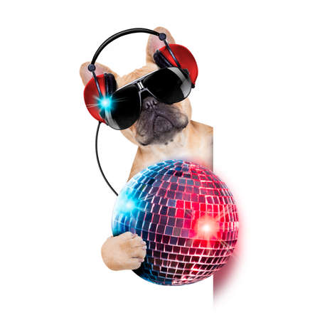 dj bulldog dog with headphones listening to music holding a disco ball, besides a white banner or placard , isolated on white background