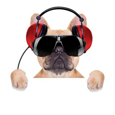 audifonos dj: perro bulldog dj con los auriculares escuchando música detrás de una bandera blanca o pancarta, aislados en fondo blanco