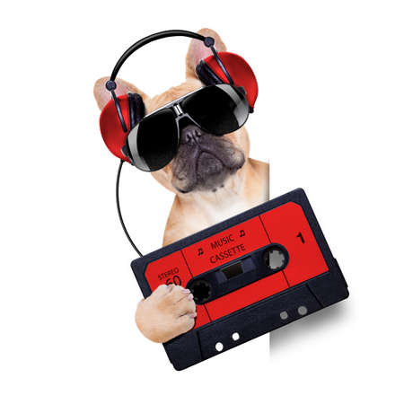 jukebox: dj bulldog dog with headphones listening to music holding a cassette, besides a white banner or placard , isolated on white background Stock Photo