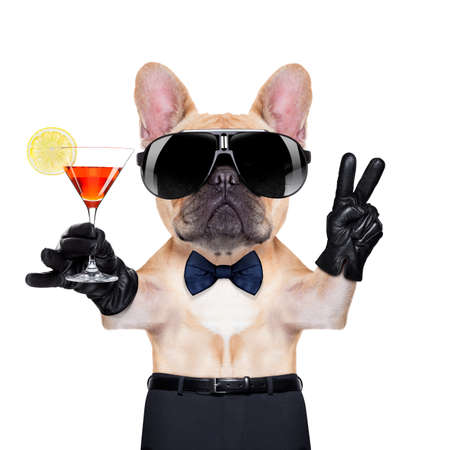french bulldog holding a  glass of red martini  with peace or victory fingers , ready to toast,  isolated on white background photo