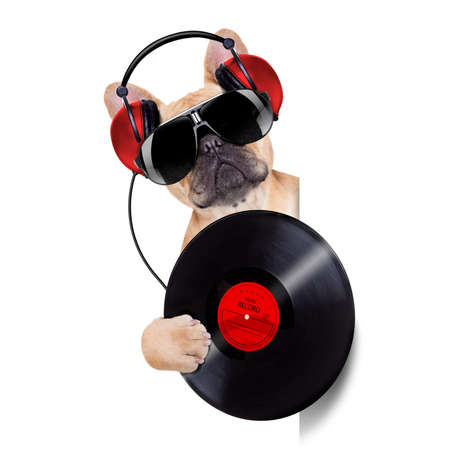 headphones: dj dog playing music record beside a white and blank empty banner or placard, isolated on white background