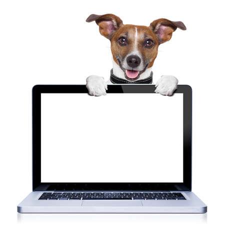 Jack Russell Terrier hond achter een pc computer scherm, geïsoleerd op een witte achtergrond
