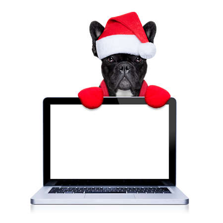 santa moose: christmas  french bulldog dog with santa claus  costume behind a laptop computer pc, isolated on white background Stock Photo
