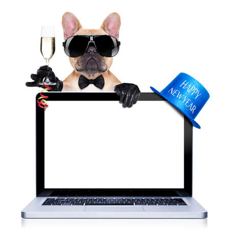 french bulldog dog ready to toast for new years eve, behind a laptop pc computer, isolated on white background photo
