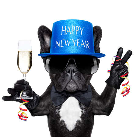 french bulldog with a  champagne glass and victory or peace fingers