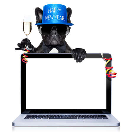 beverage display: french bulldog dog ready to toast for new years eve, behind a laptop pc computer, isolated on white background Stock Photo