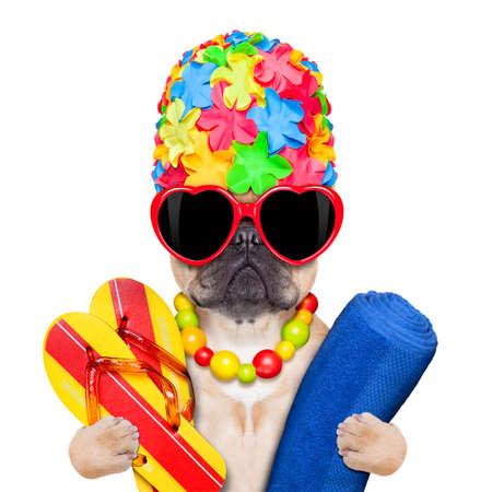 Französisch Bulldog bereit für Sommerurlaub Urlaub mit Badekappe, Flip-Flops und Handtuch, isoliert auf weißem Hintergrund