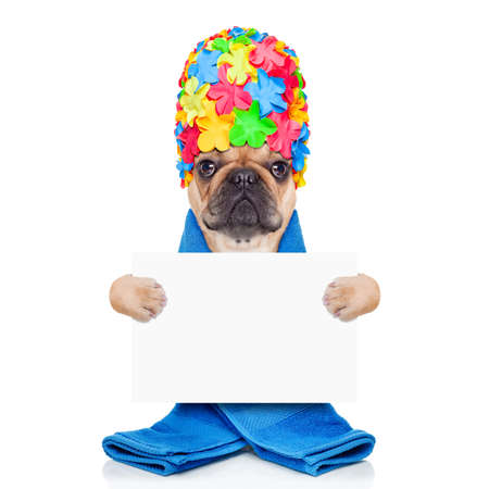 scrub cap: french bulldog dog ready to have a bath or a shower wearing a bathing cap and towel, holding a white placard or banner isolated on white background