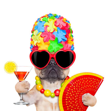 fawn french bulldog dog ready for summer vacation or holidays, wearing sunglasses and having a  cocktail,  isolated on white background Stock Photo