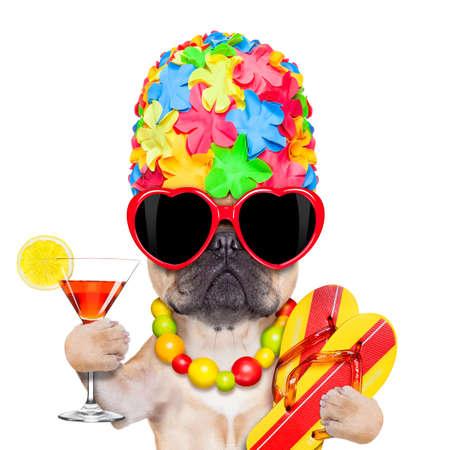 Adular perro bulldog francés listo para las vacaciones de verano o vacaciones, con gafas de sol y un cóctel, aislado sobre fondo blanco Foto de archivo - 35290595