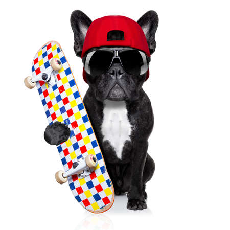 french bulldog dog, as a skater with red cap and skateboard, isolated on white background Foto de archivo