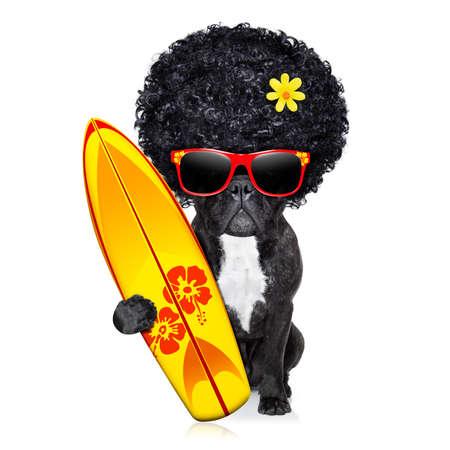 dogo: franc�s perro bulldog surfista celebraci�n de una surfborad llevaba peluca afro poder flor, y rojo gafas de sol, aislados en fondo blanco Foto de archivo