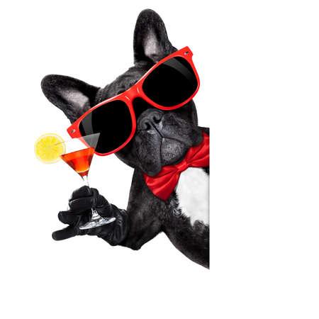 felicitaciones: perro bulldog francés sostiene martini copa de cóctel listo para divertirse y parte, detrás de una pancarta en blanco blanco o pancarta, aislados en fondo blanco