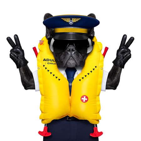 volar: perro bulldog francés como un capitán de cabina de avión que llevaba un chaleco salvavidas de color amarillo, con dedos de la paz y la victoria, aislado en fondo blanco