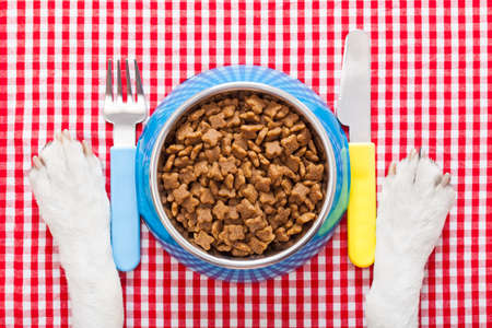 full dog food bowl with knife and fork on tablecloth,paws of a dog