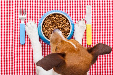 perro comiendo: el plato de comida de perro completo con cuchillo y tenedor sobre mantel, patas y la cabeza de un perro Foto de archivo