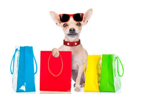 chihuahua hond met een boodschappentas klaar voor korting en de verkoop in het winkelcentrum, op een witte achtergrond Stockfoto