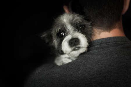 afecto: perro y el due�o por amor abraz�ndose muy cerca, se puede sentir el cari�o